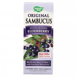 Nature's Way Sambucus Original Syrup - 4 fl oz